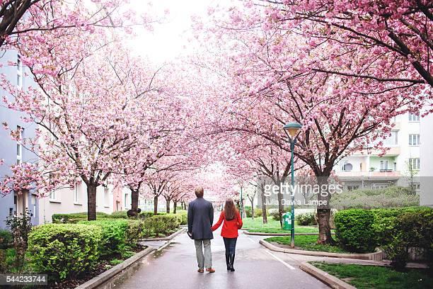 Couple sorrounded by Sakura Blossom.