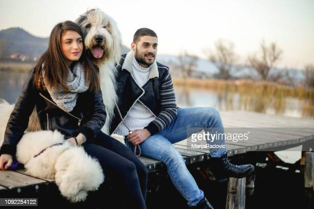couple spending time together ion the pier with their dogs - old english sheepdog stock pictures, royalty-free photos & images