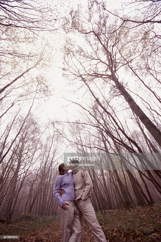 Couple Stand in a Forest Kissing : Stock Photo