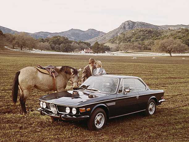 Couple Standing Besides Car And Horse Wall Art