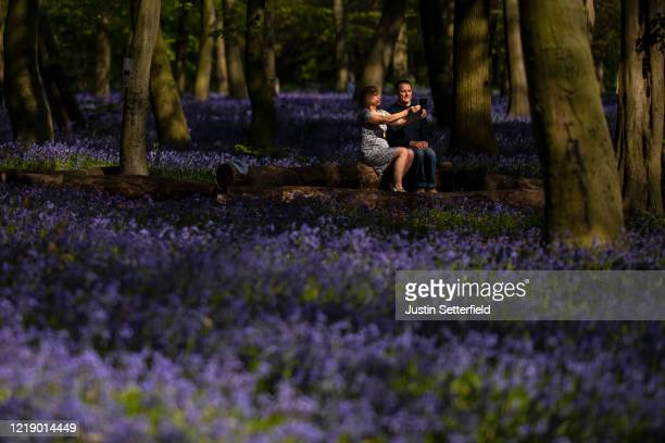 A couple takes a selfie amongst the bluebells in the woods at Wanstead on April 15 2020 in London England The Coronavirus pandemic has spread to many...