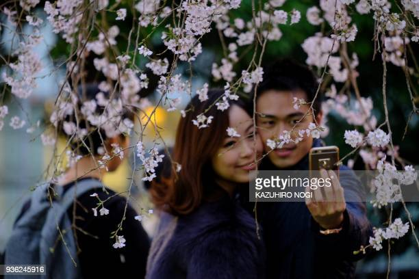 TOPSHOT A couple takes photos with cherry blossoms in full bloom at Tokyo's Ueno Park on March 22 2018 / AFP PHOTO / Kazuhiro NOGI