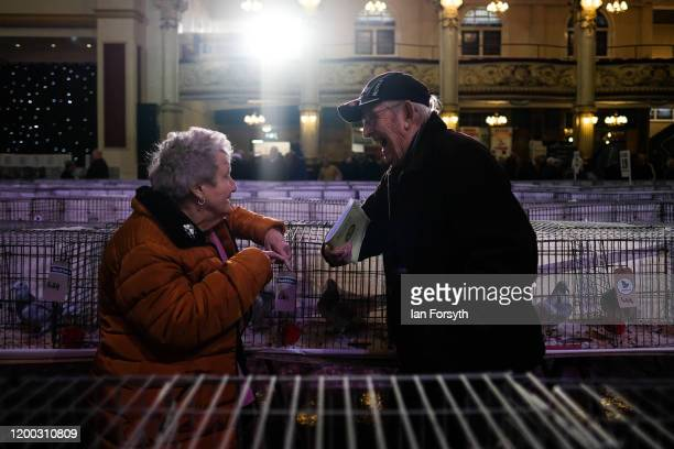 A couple talk as they stand next to the pigeon cages on the first day of the annual British Homing Pigeon World Show of the Year at Blackpool Winter...