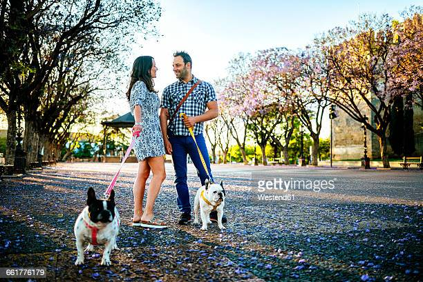 Couple talking while walking their dogs