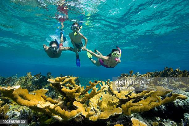 couple teaching son (8-10) to snorkel over coral reef, underwater view - snorkeling stock pictures, royalty-free photos & images