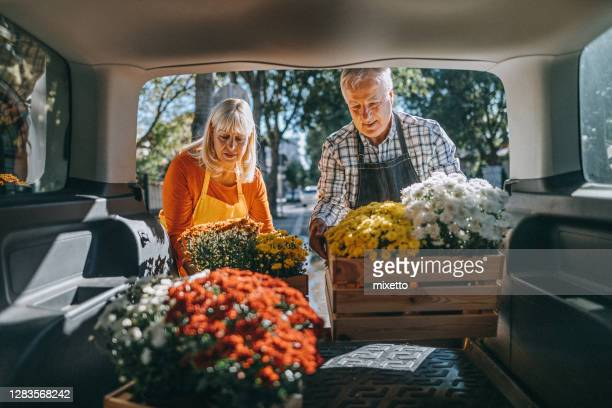 couple unloading crates of fresh flowers from car trunk - working seniors stock pictures, royalty-free photos & images