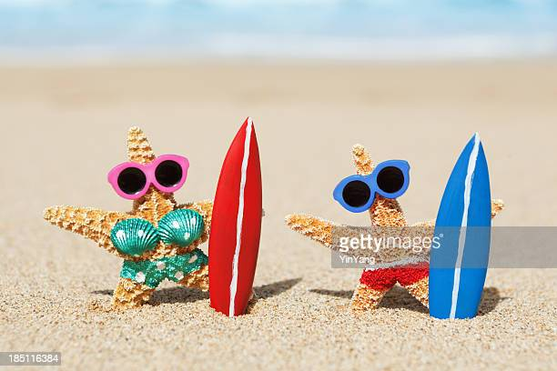 couple vacationing and surfing in tropical beach paradise hz - starfish stock pictures, royalty-free photos & images