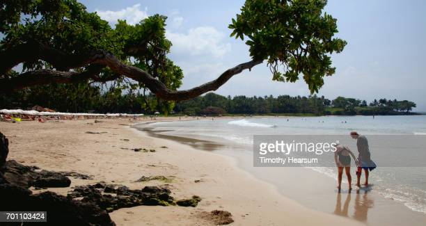 couple wading on a sandy beach; umbrellas, sunbathers and swimmers beyond - timothy hearsum fotografías e imágenes de stock