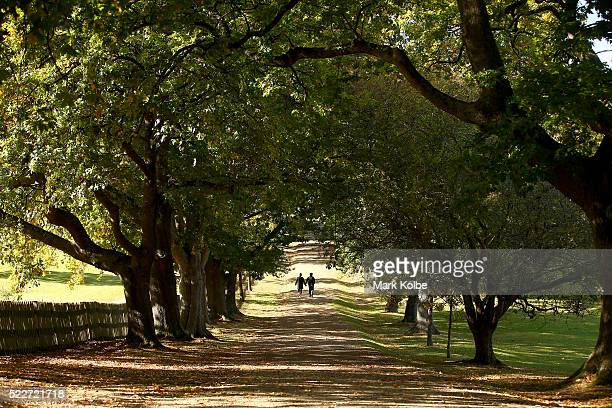 A couple walk hand in hand down a lane lined with oak trees in the Port Arthur Historical Site on April 18 2016 in the Port Arthur Australia The...