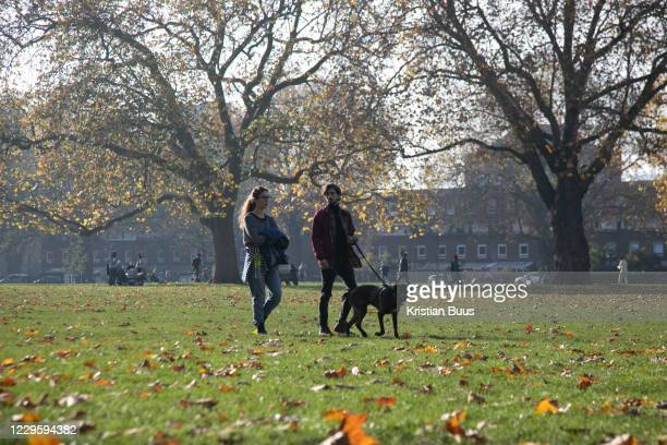 Couple walk their dog in the autumn sun during the second coronavirus national lockdownon on 7th of November 2020, hackney,East London, United...