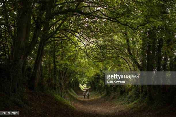 A couple walk through trees forming a tunnel down and old Roman Road on October 16 2017 in Halnaker England The South East of the country is...