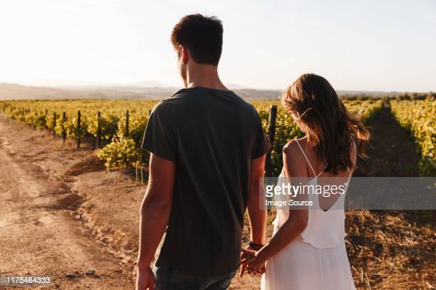couple walking along vineyard, cape town, south africa - long dress stock pictures, royalty-free photos & images