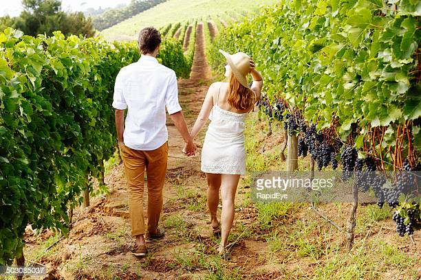 Couple walking away, hand in hand, through beautiful vineyard