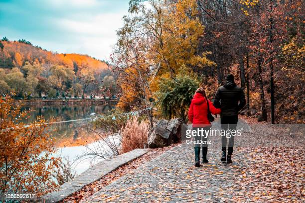 couple walking by the lake in the forest during the autumn season - human back stock pictures, royalty-free photos & images