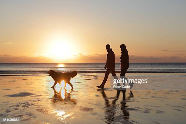 couple walking do on beach at sunset - one animal stock pictures, royalty-free photos & images