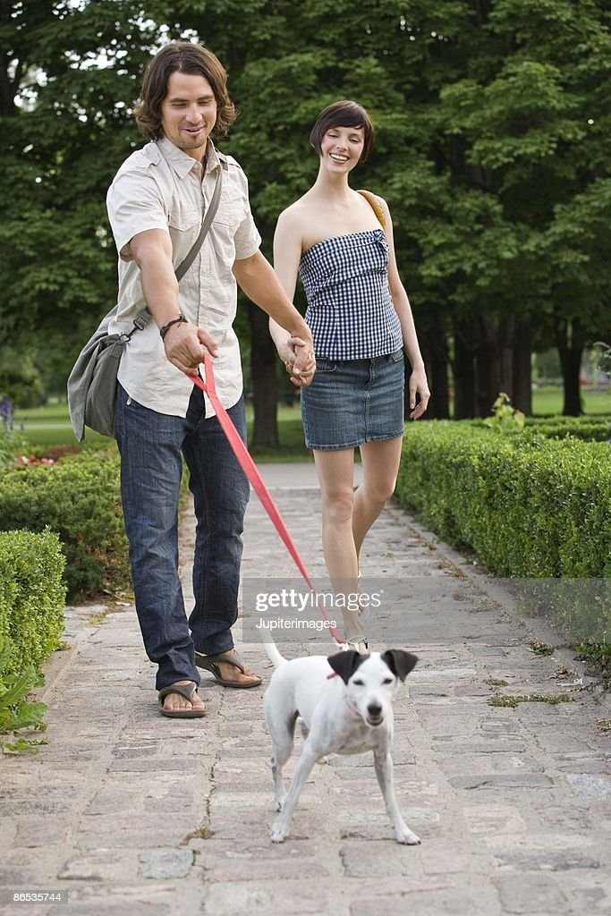 Couple walking dog in park : Stock Photo