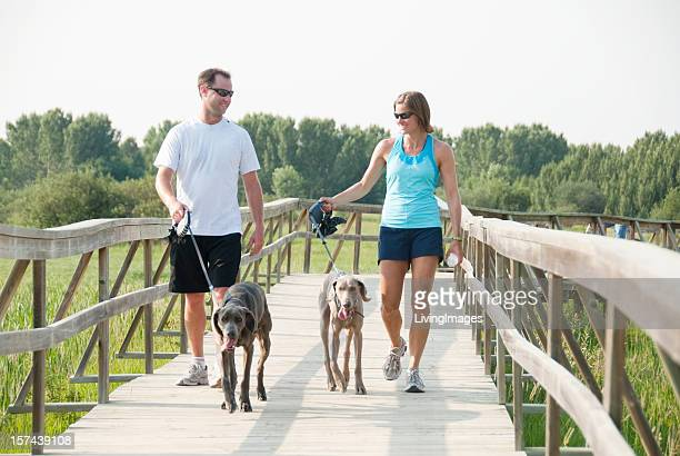 couple walking dogs while exercising - coonhound stock pictures, royalty-free photos & images