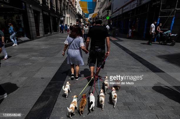 Couple walking in Preciados Street, a shopping area near Sol Square in downtown Madrid, with eight little dogs.