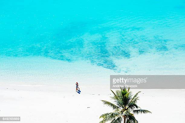 a couple walking on catseye beach - île d'hamilton photos et images de collection