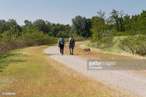 couple walking on country road with dog - pjphoto69 stock pictures, royalty-free photos & images