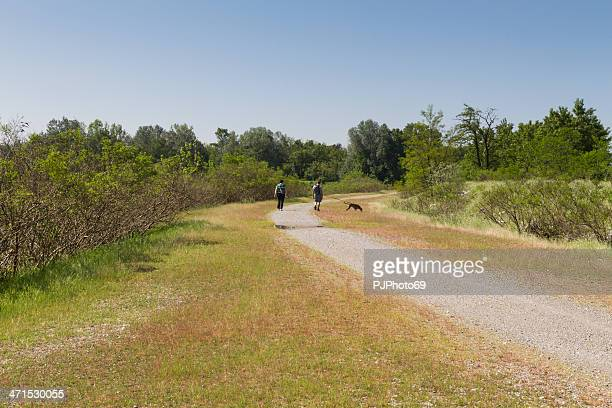 Couple walking on country road with dog