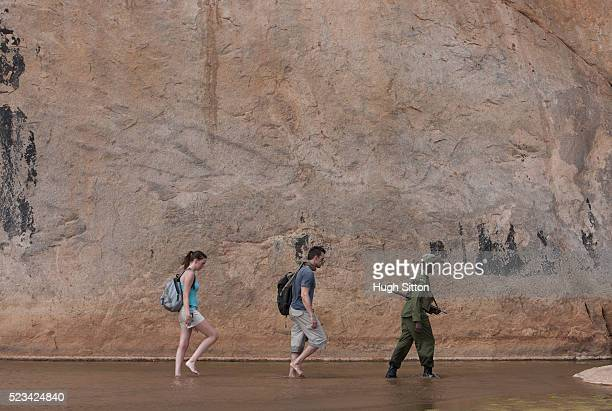 couple walking though water with guide - hugh sitton stock pictures, royalty-free photos & images