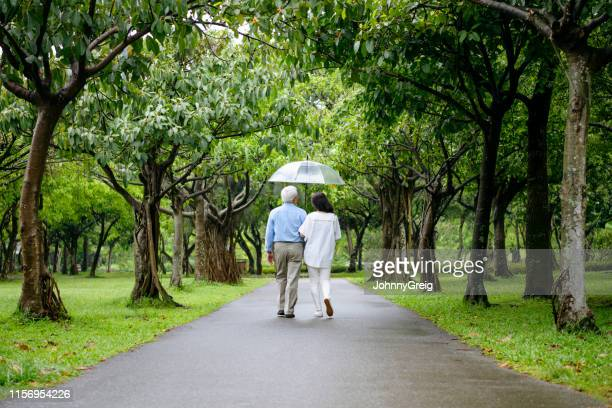couple walking through trees with umbrella - avenue stock pictures, royalty-free photos & images