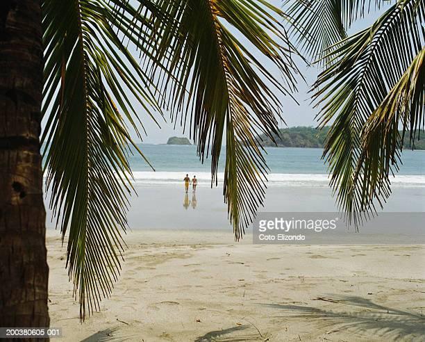 couple walking towards sea, rear view - playa carrillo fotografías e imágenes de stock