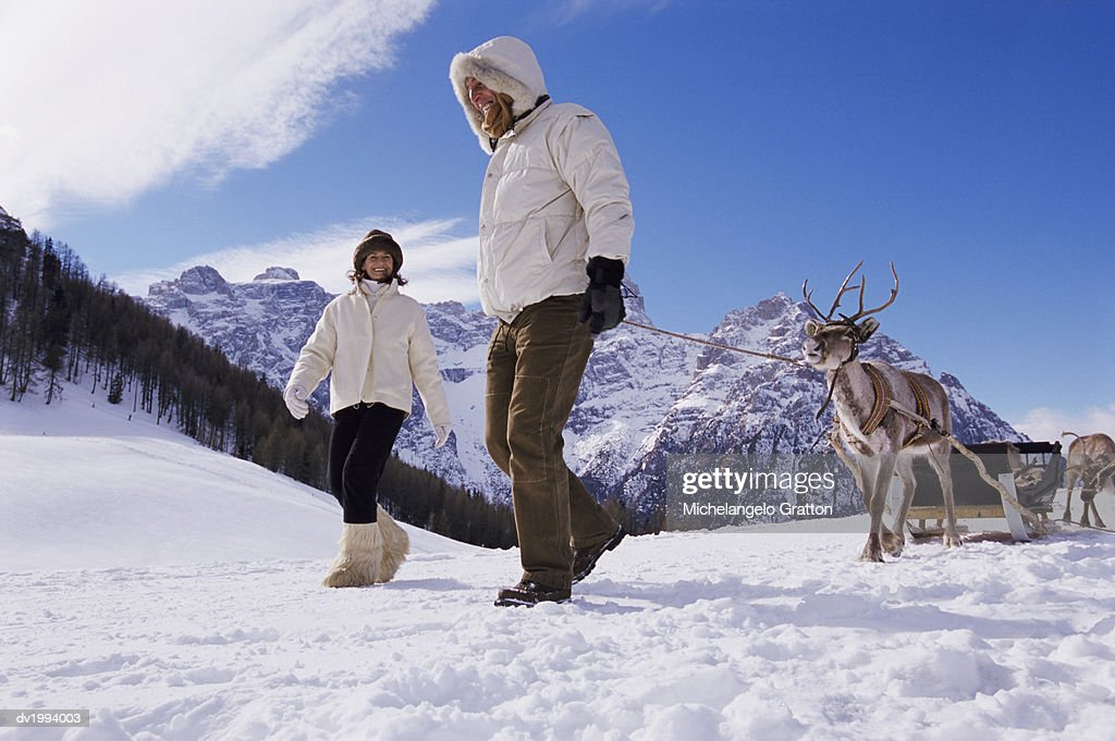 Couple Walking With a Sled and Reindeer in the Snowy Mountains : Stock Photo