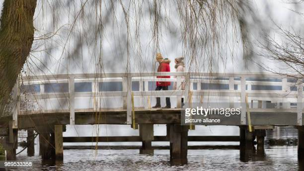 Couple walks across a bridge at the Zwischenahner Meer lake in Bad Zwischenahn, Germany, 25 December 2017. Photo: Mohssen Assanimoghaddam/dpa