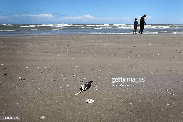 A couple walks along the Gulf of Mexico on the American side of the USMexico border at the mouth of the Rio Grande on October 19 2016 in Boca Chica...