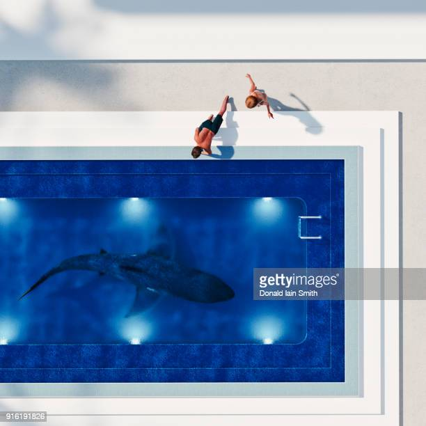 couple watching shark in swimming pool - surreal - fotografias e filmes do acervo