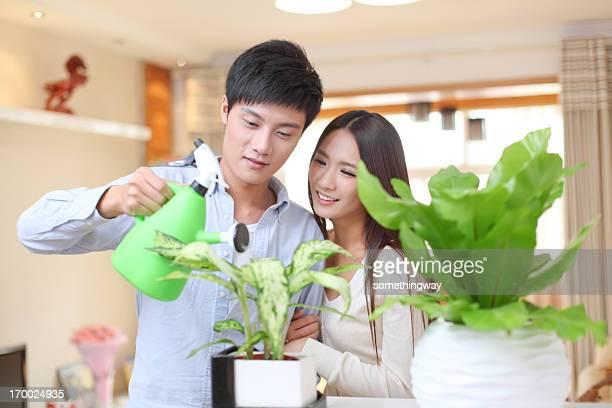Paar gießen Blumen