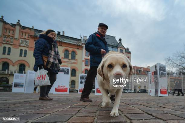 A couple with a dog passes near 'Fathers of Independence' outdoor exposition on display in Krakow's Szczepanski Square brings closer the start of the...