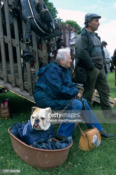 Couple with an English bulldog selling horse tackle at the Cotswold Pony Sales near Stow-on-the-Wold, England, circa 1996. This image is from a...