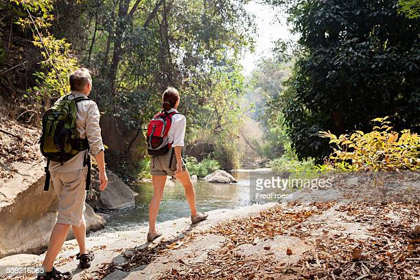 couple with backpack hiking in rainforest - chiang mai province stock photos and pictures