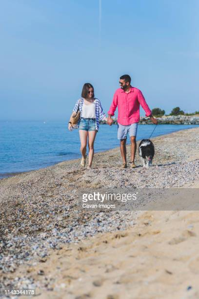couple with dog holding hands while walking at beach against blue sky during sunny day - blauwe riem stockfoto's en -beelden