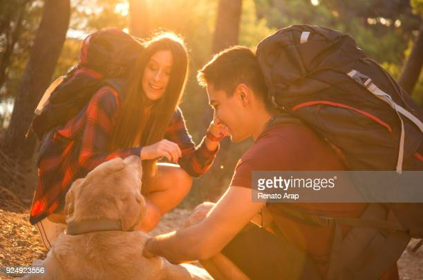 couple with dog - england montenegro stock pictures, royalty-free photos & images