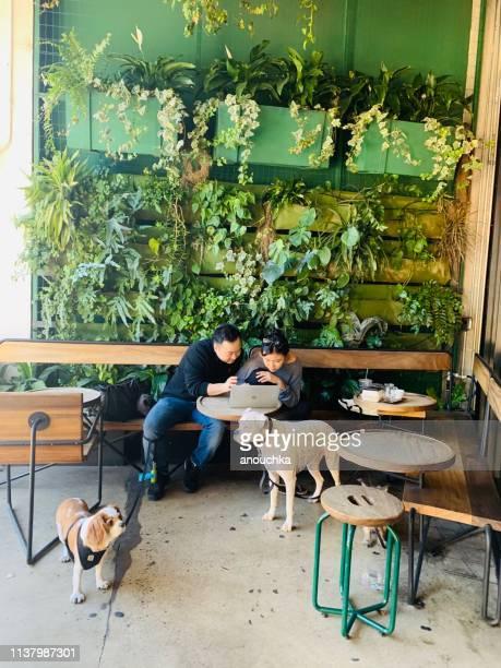 pares com os cães que trabalham no portátil no café do passeio, los angeles downtown, eua - usa - fotografias e filmes do acervo