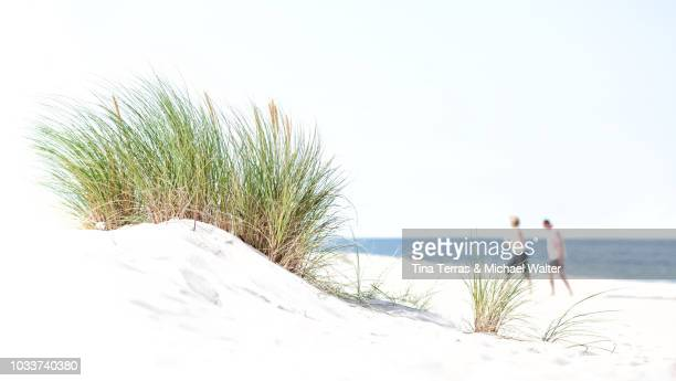 a couple with dunes and sea on the isle of sylt in summer - tina terras michael walter stock-fotos und bilder