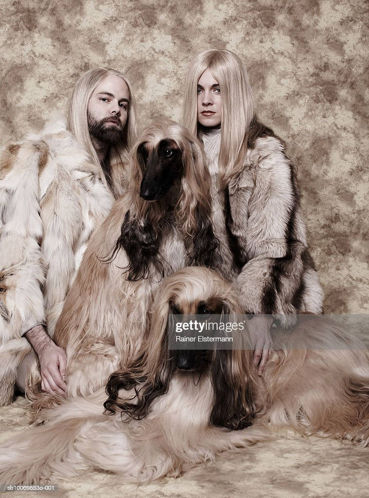Couple with long blond hair sitting with two Afgan Hounds in studio, portrait : Stock Photo