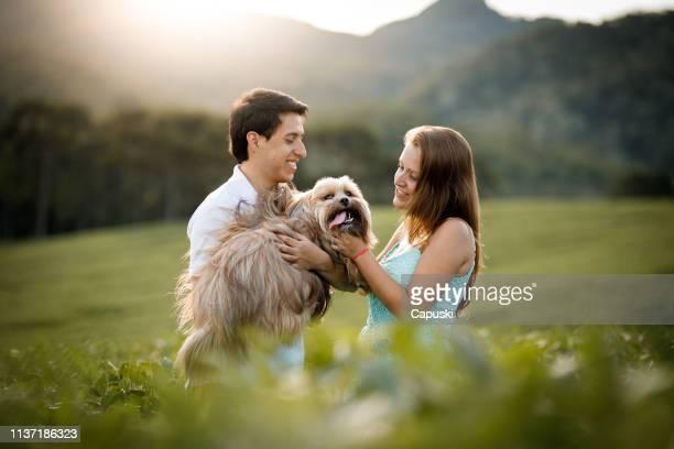 par med sin hund i fälten - lhasa apso bildbanksfoton och bilder