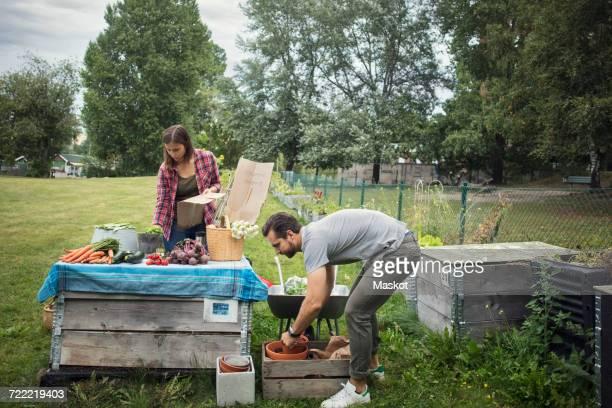 Couple working at table full of freshly harvested garden vegetables