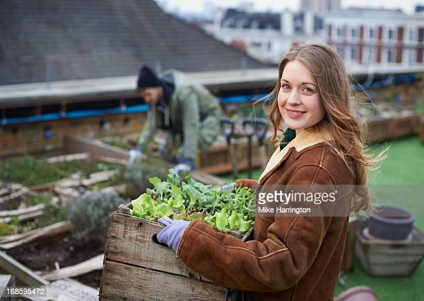 Couple working in roof garden.