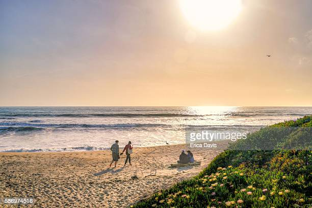Couples relax on Half Moon Bay beaches with blooming wildflowers sea figs) and spectacular ocean views.