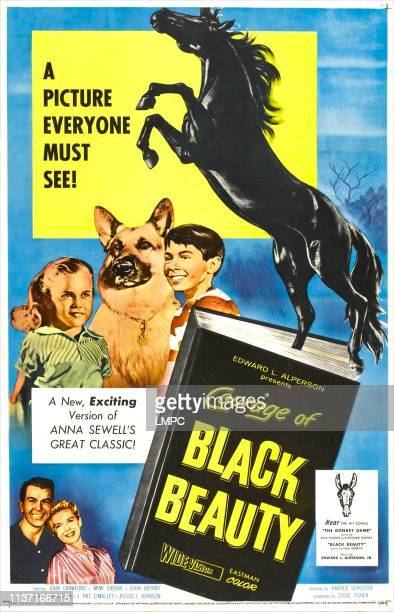 Courage Of Black Beauty lobbycard right Mimi Gibson Johnny Crawford bottom center Diane Brewster John Bryant 1957