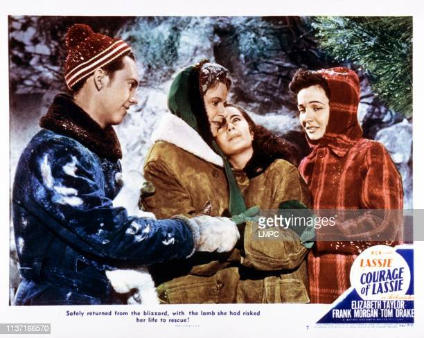 Courage Of Lassie, lobbycard, l-r: David Holt, Selena Royle, Elizabeth Taylor, Catherine McLeod, 1946.