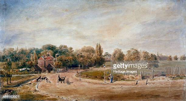 Court Lane and Lordship Lane Dulwich London 1860 View showing cattle grazing and horsedrawn vehicles passing on the road