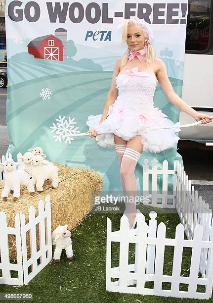 Courtney Stodden protests for PETA's Save The Sheep campaign on November 24 2015 in Hollywood California