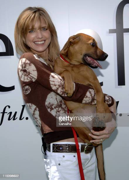 Courtney ThorneSmith with Mimi during Courtney ThorneSmith Hosts Puppy Park in Central Park June 18 2005 at Central Park in New York City New York...